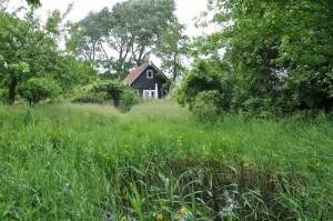 juni-tuinhuis-met-poel-op-voorgrind