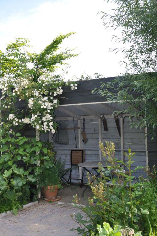 tuinhuisje voor gasten – Garden Guesthouse